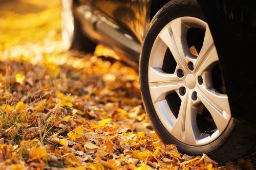 Detailaufnahme von den Reifen eines Autos welche auf orange-farbenen Blättern stehen.